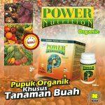 Power Nutrition Terbaik Untuk Tanaman Buah